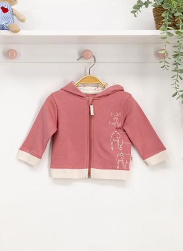 U.S. Polo Assn. Lisanslı Pembe Bebek Sweatshirt Pembe
